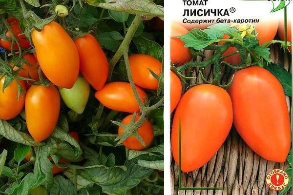 Томат Лисичка: характеристика и описание сорта, урожайность, отзывы, фото