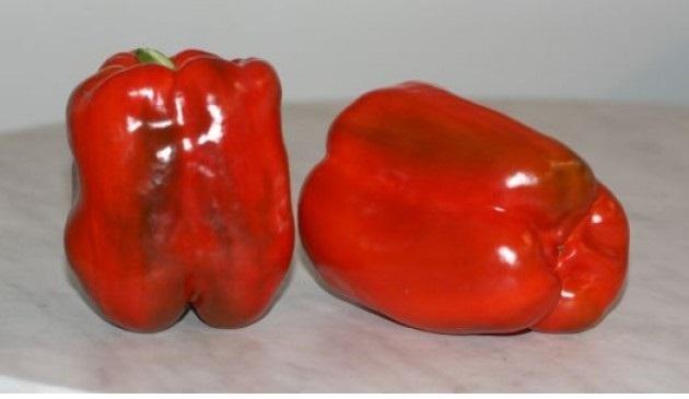 Семена перцев для Сибири