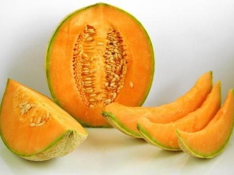Дыня Золушка: отзывы, характеристика и описание сорта, урожайность, фото