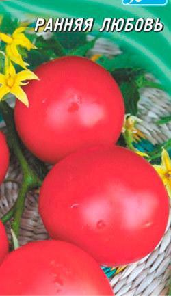 Томат Ранняя любовь: характеристика и описание сорта, урожайность, отзывы, фото