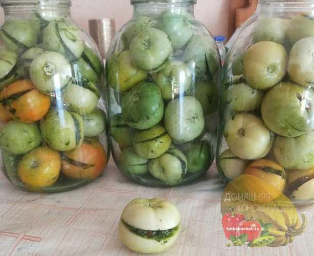 Соленые зеленые помидоры в банках, как бочковые: как засолить, очень вкусные рецепты