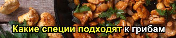 Грибная икра на зиму: рецепт через мясорубку, без стерилизации, с морковью и луком, с чесноком, с помидорами