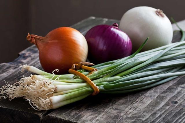 Лучшие удобрения для лука и чеснока