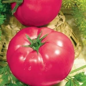 Томат Розовые щечки: характеристика и описание сорта