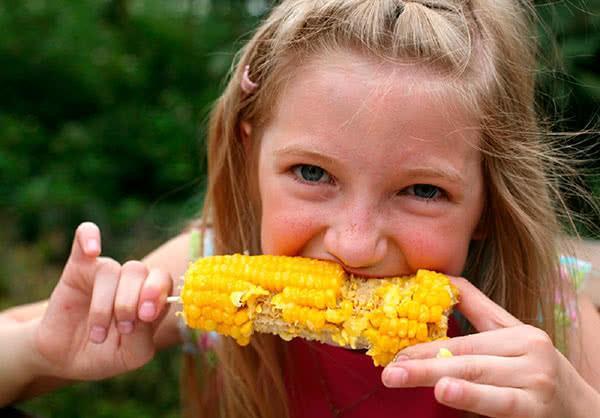 Кукуруза: польза и вред для здоровья, состав, калорийность, применение, противопоказания