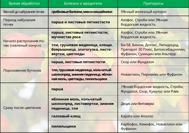 Обработка плодовых деревьев и весной