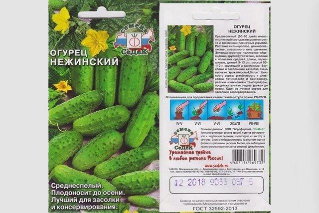Огурец Нежинский: отзывы, фото, описание сорта
