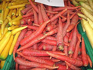 Морковь фиолетового цвета