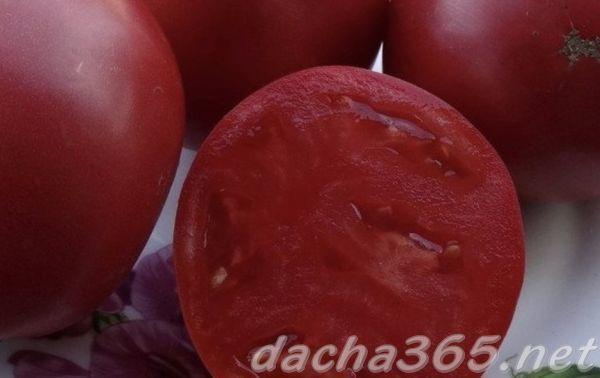 Томат Розовый спам f1: отзывы, фото, урожайность