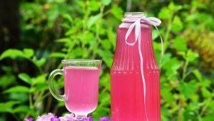 Лимонный компот: польза, вкусные и простые рецепты приготовления