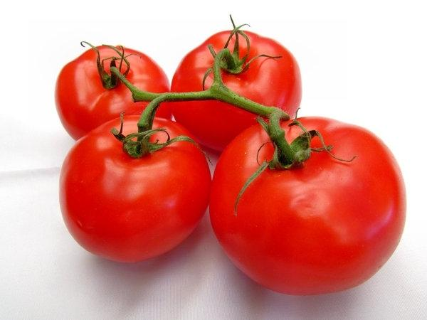 Ультраранние сорта томатов