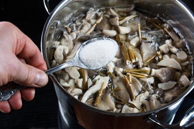 Соленые вешенки: рецепты в домашних условиях на зиму