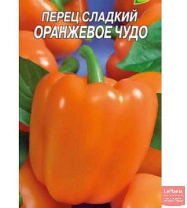 Ранний сорт перца для Сибири