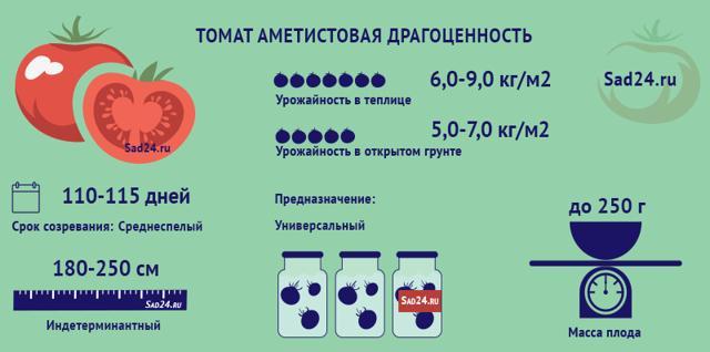 Томат Аметистовая драгоценность: описание, фото, отзывы