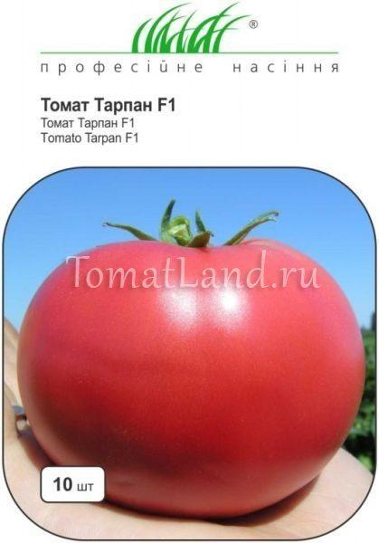 Томат Тарпан f1: описание, отзывы, фото
