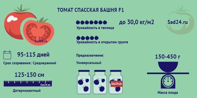 Томат Спасская башня: описание сорта, фото, отзывы