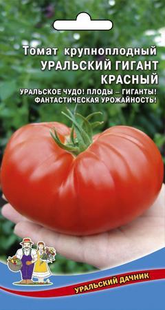 Томат Уральский гигант: описание и характеристика сорта, отзывы, фото