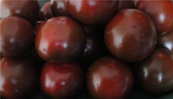 Томат Сахар коричневый: отзывы, фото