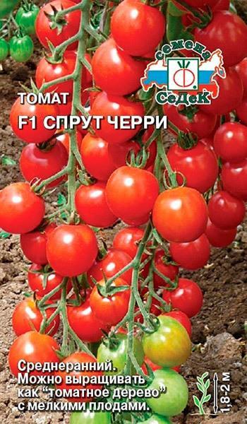 Томат Спрут характеристика и описание сорта, отзывы, фото