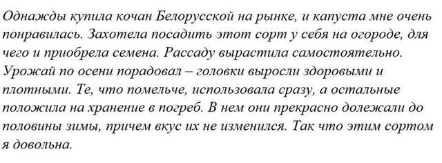 Капуста Белорусская: описание сорта, фото, отзывы