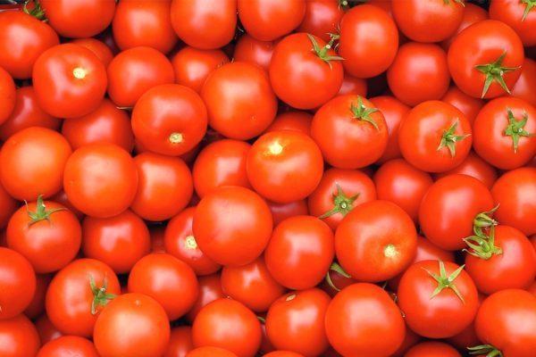 Лучшие сорта помидор на 2019 год: отзывы, фото