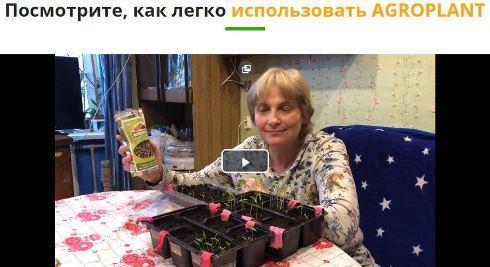 Малышок: удобрение для томатов и перцев + отзывы