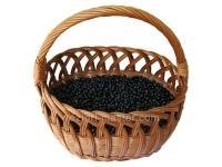 Сушеная черника: польза и вред, правила сушки, применения