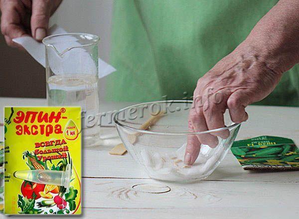 Огурец Родничок f1: описание сорта, фото, отзывы