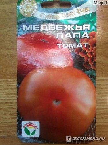 Томат Медвежья кровь: отзывы, характеристика и описание сорта, урожайность, фото