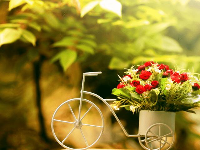 Календарь посадки цветов на 2019 год