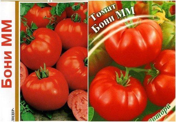 Томат Бони ММ: характеристика и описание сорта