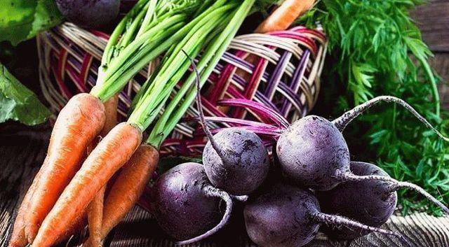 Подкормки для моркови и свеклы