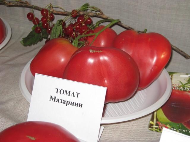 Томат Мазарини: описание сорта, фото, отзывы