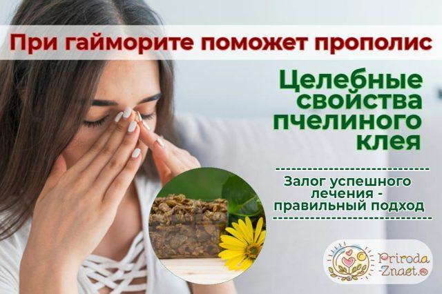 Настойка прополиса при гайморите: рецепты, ингаляции, как лечить