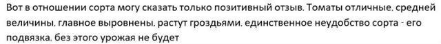 Томат Юбилейный Тарасенко: описание сорта, фото, отзывы