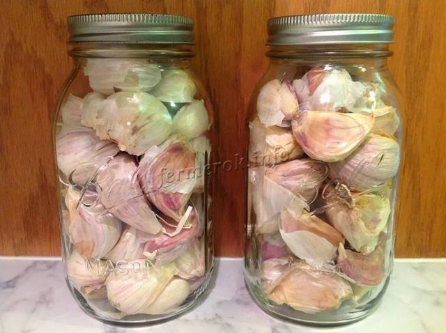 Хранение чеснока в домашних условиях на зиму: в холодильнике, в банке, в соли