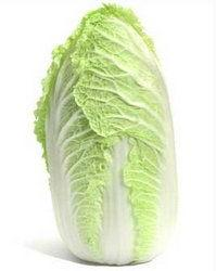 Пекинская капуста из кочерыжки выращивание + фото