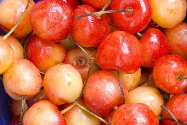 Черешня Юлия: описание сорта, морозостойкость, опылители, фото, отзывы